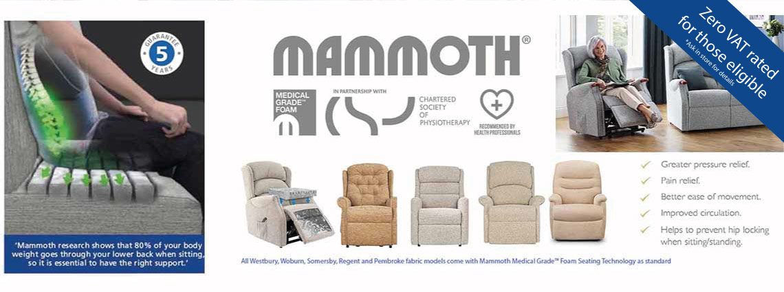 Celebrity with Mammoth Seating Technology
